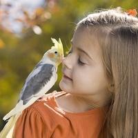 girl_bird_medium